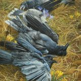 a crow painting by John C. Pitcher