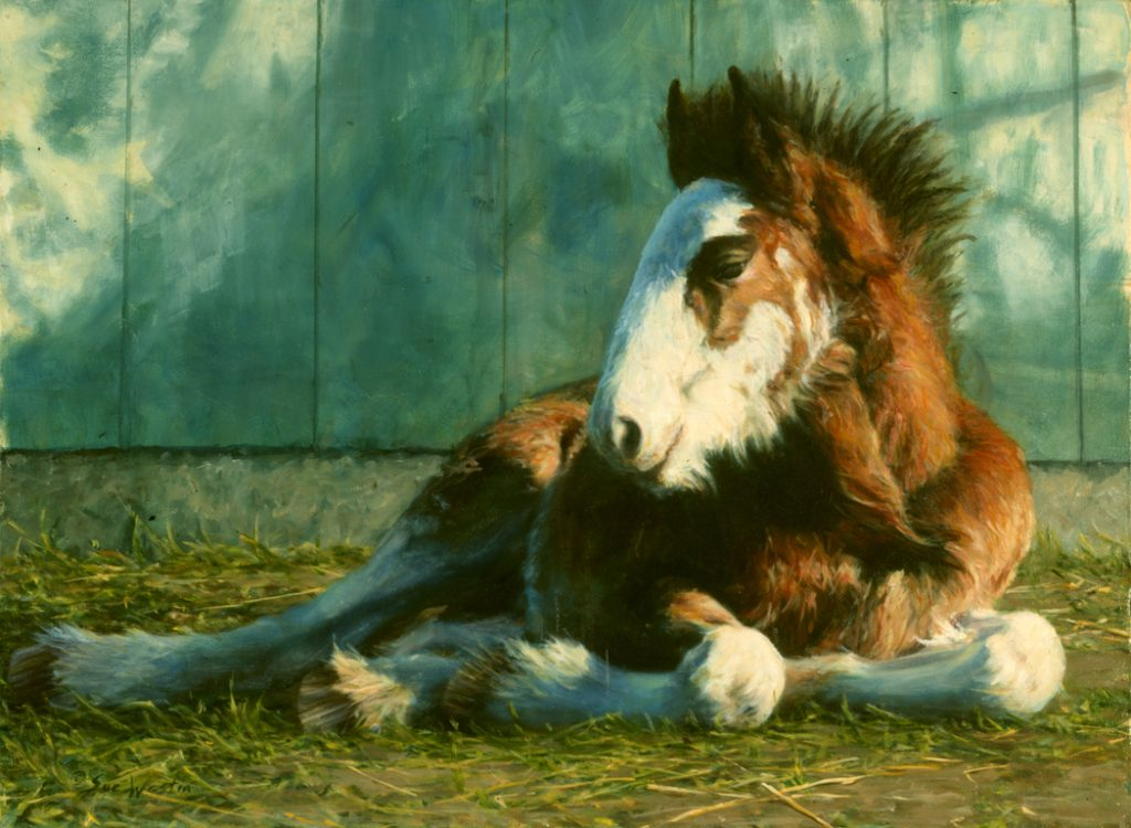 Painting of a Clydesdale by Sue Westin