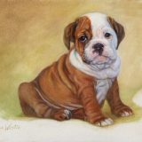 Bulldog oil painting by Sue Westin