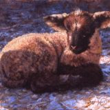 Lamb painting by Sue Westin